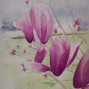 Envol de tulipiers
